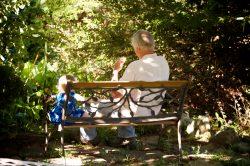 photos sitting on bench