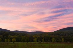 wildlife mtns sunset