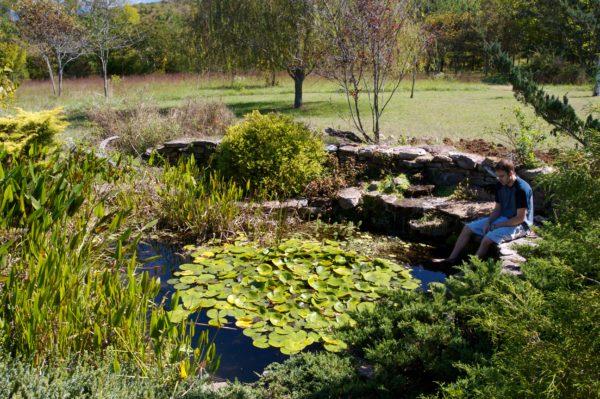 amenities pond
